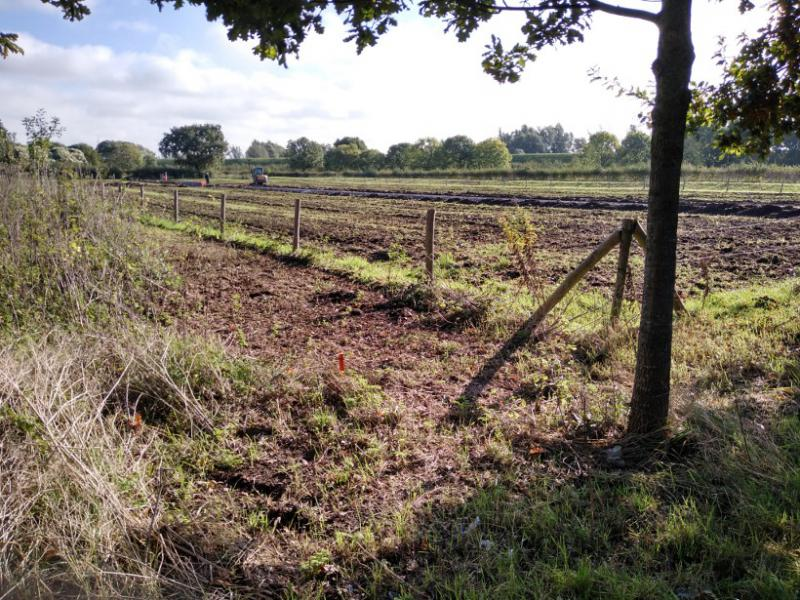 Moestuin in aanleg West_okt2019